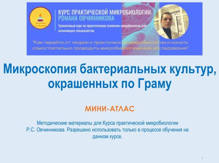 Мини-атлас_мазки по Граму обложка